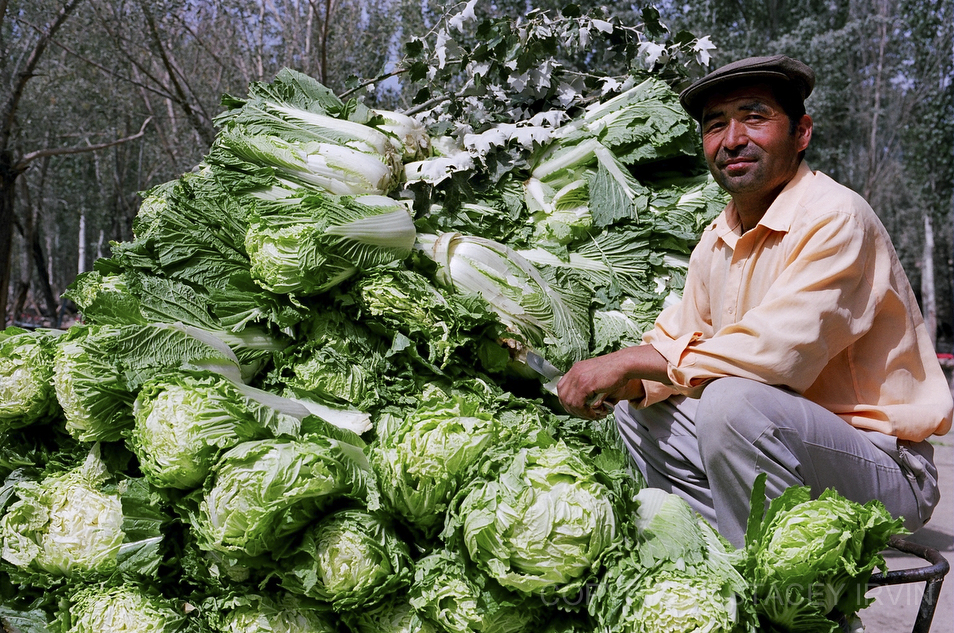 Portrait with Cabbage