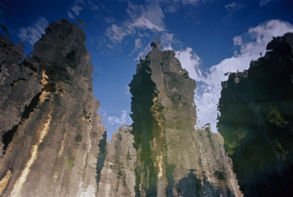 Stone Forest Reflection
