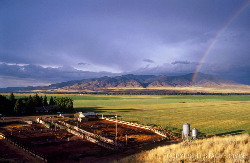 Six Bar S Ranch By Photographer Stacey Irvin Montana Gallery